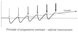 progressief overload