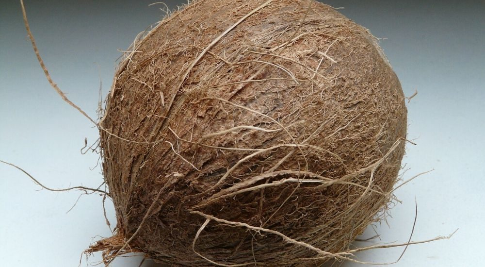 Kokosolie: is dat goed voor afvallen? 1
