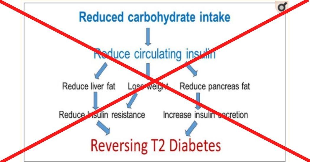#9 WIB: Koolhydraatbeperkt voor diabetes? 2